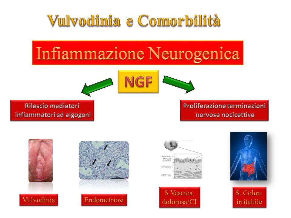 Infiammazione Neurogenica