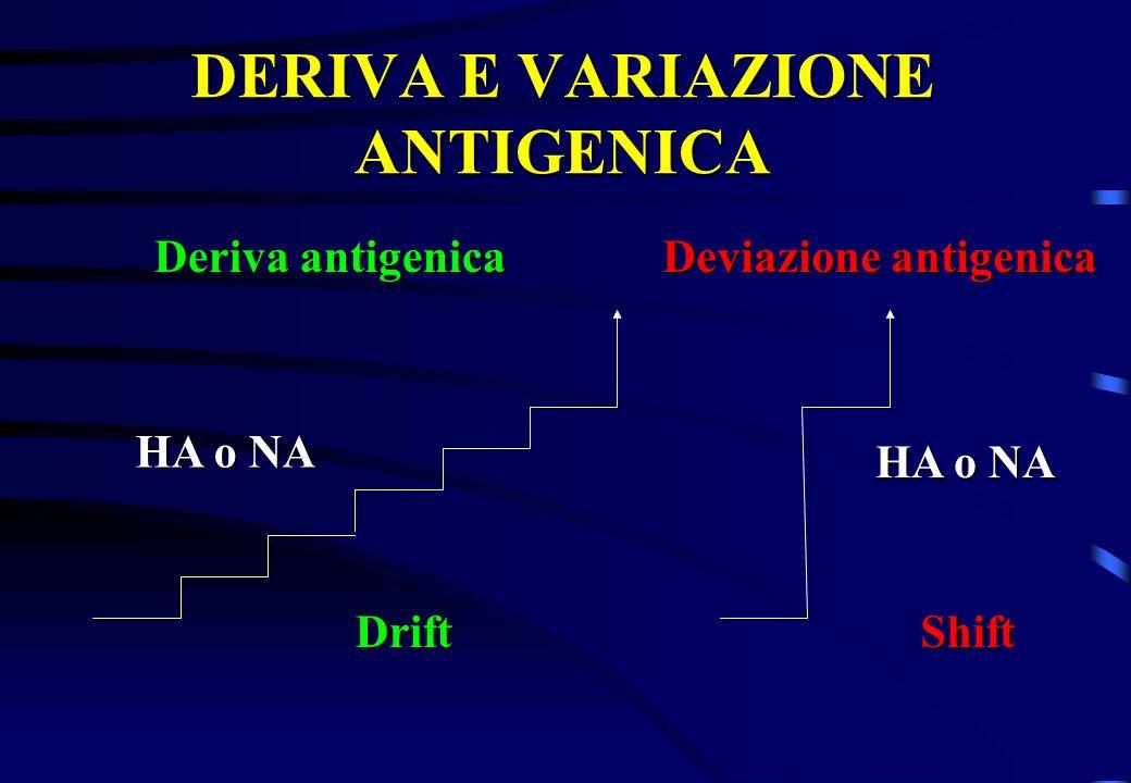 DERIVA E VARIAZIONE ANTIGENICA