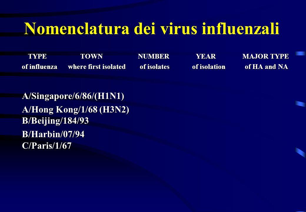 Nomenclatura dei virus influenzali