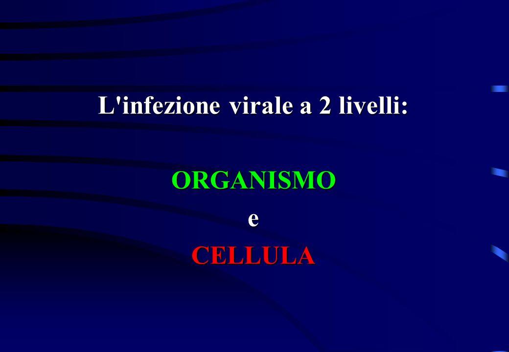 L infezione virale a 2 livelli: