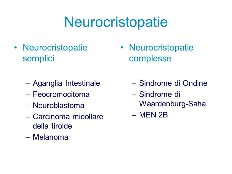 Neurocristopatie Neurocristopatie semplici Neurocristopatie complesse
