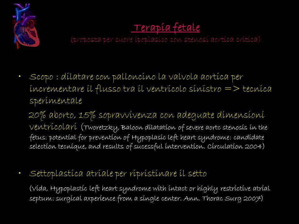 Terapia fetale (proposta per cuore ipoplasico con stenosi aortica critica)