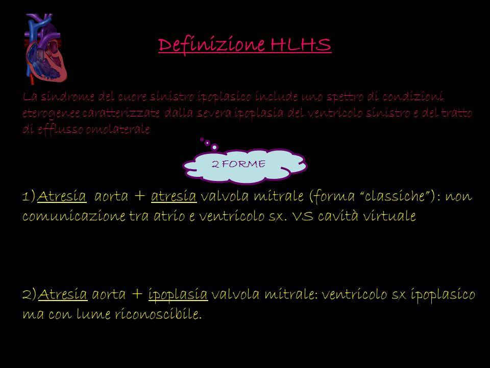 Definizione HLHS