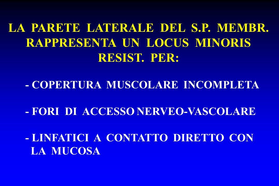 LA PARETE LATERALE DEL S.P. MEMBR. RAPPRESENTA UN LOCUS MINORIS RESIST. PER: