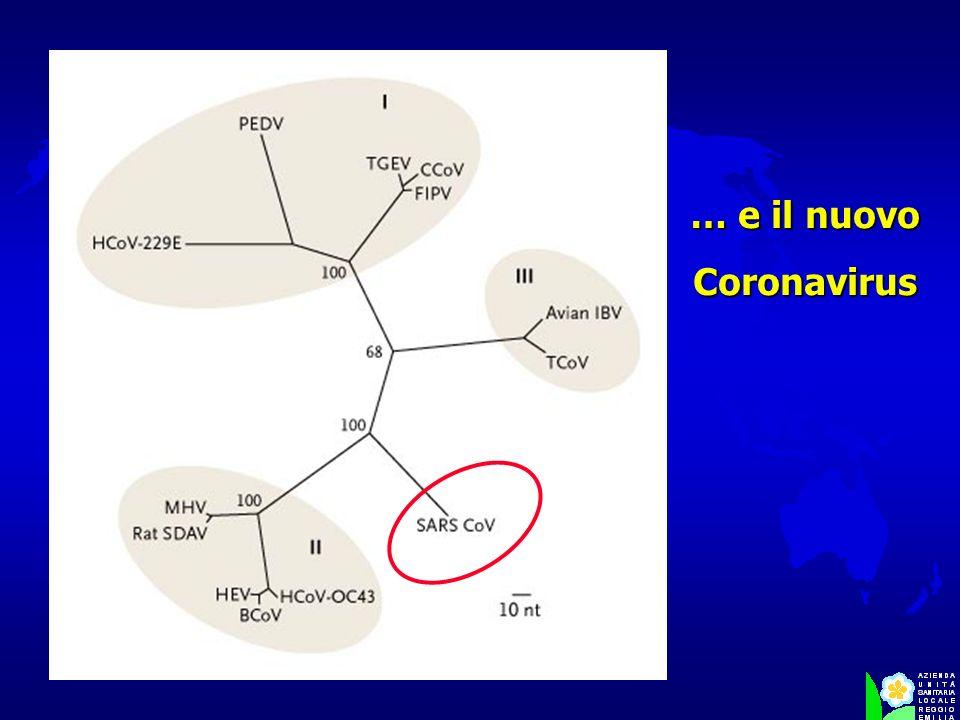 … e il nuovo Coronavirus