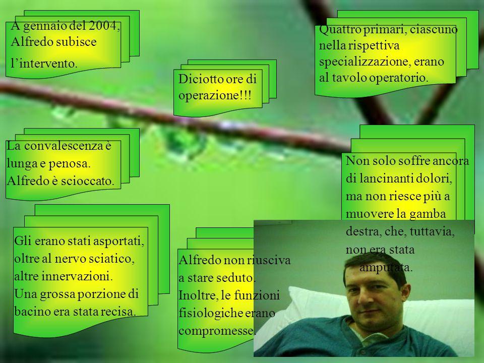 A gennaio del 2004, Alfredo subisce. l'intervento. Quattro primari, ciascuno. nella rispettiva. specializzazione, erano.