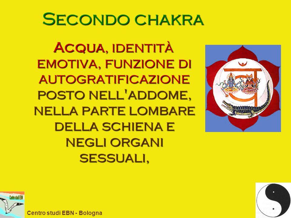 Secondo chakra Acqua, identità emotiva, funzione di autogratificazione posto nell addome, nella parte lombare della schiena e negli organi sessuali,