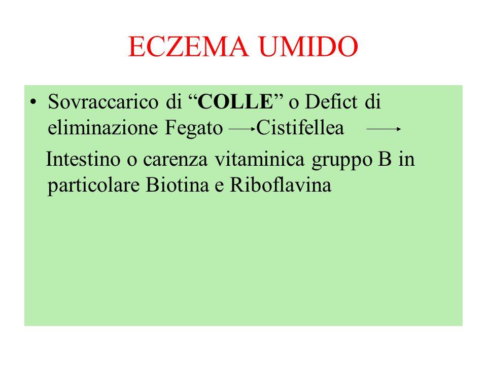 ECZEMA UMIDOSovraccarico di COLLE o Defict di eliminazione Fegato Cistifellea.