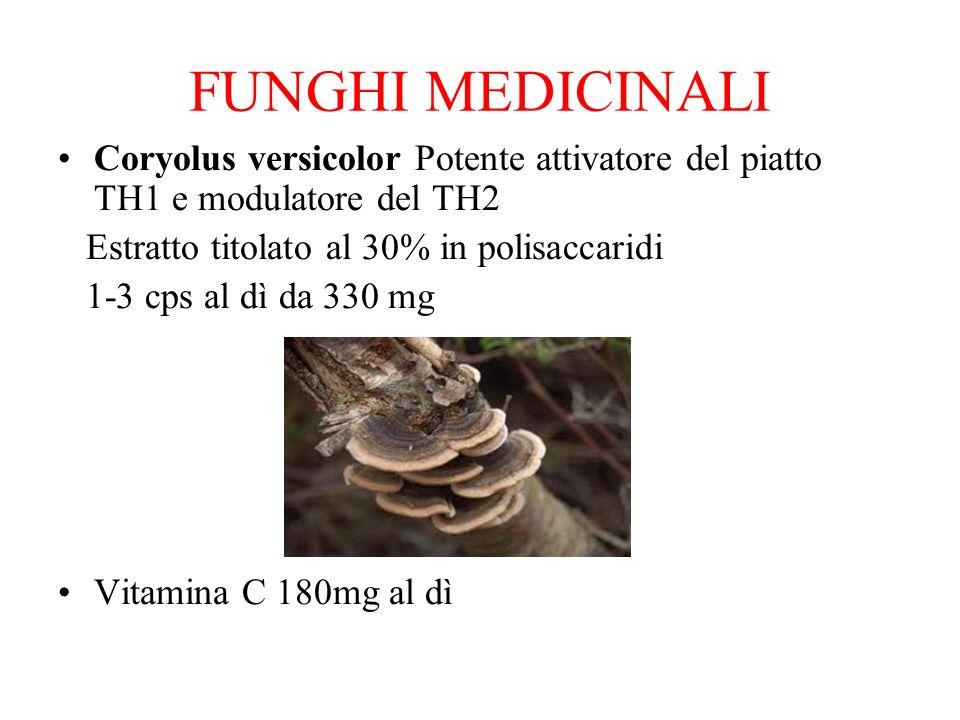 FUNGHI MEDICINALI Coryolus versicolor Potente attivatore del piatto TH1 e modulatore del TH2. Estratto titolato al 30% in polisaccaridi.