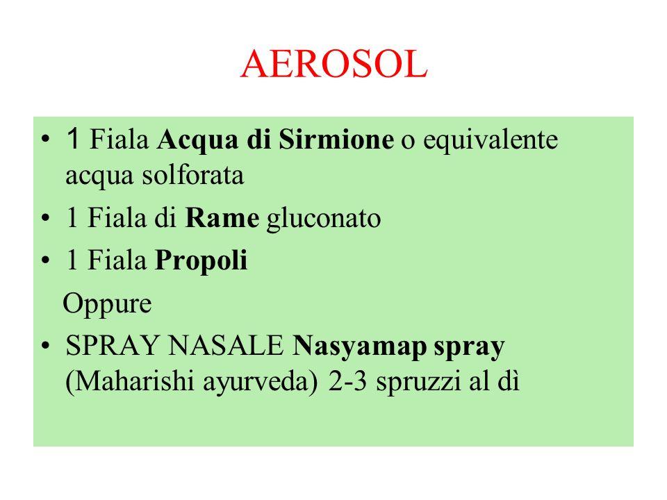 AEROSOL 1 Fiala Acqua di Sirmione o equivalente acqua solforata