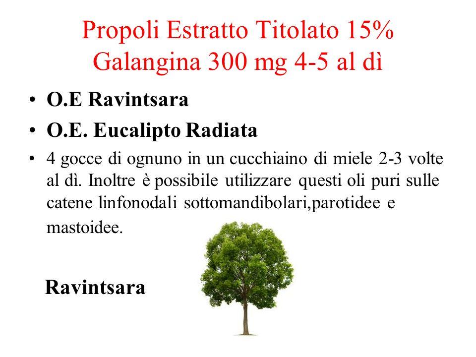 Propoli Estratto Titolato 15% Galangina 300 mg 4-5 al dì