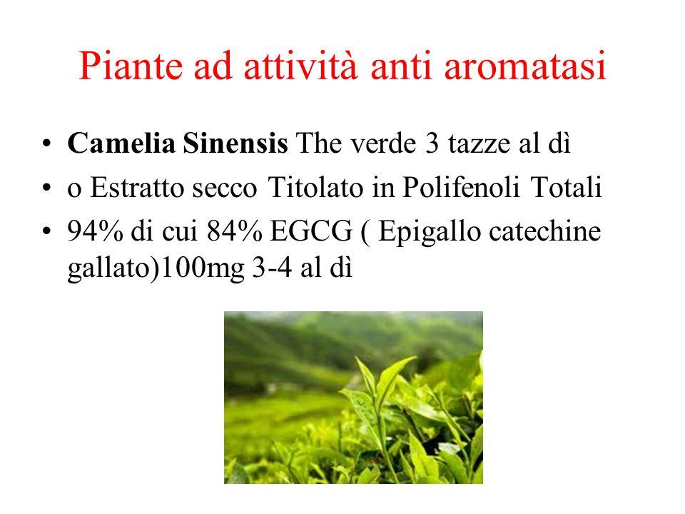 Piante ad attività anti aromatasi