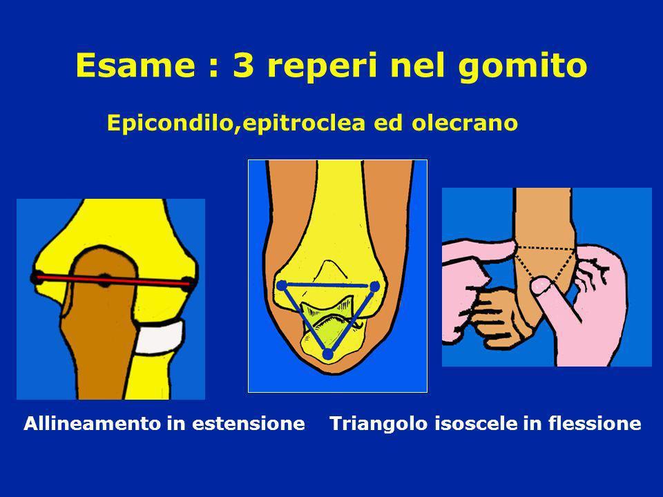 Esame : 3 reperi nel gomito