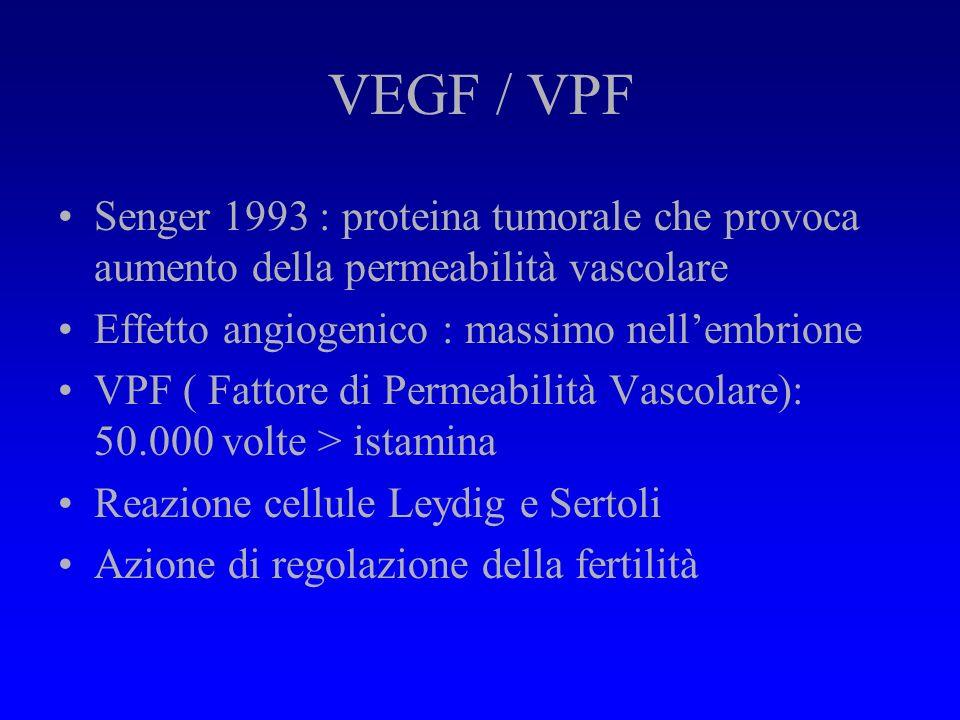 VEGF / VPF Senger 1993 : proteina tumorale che provoca aumento della permeabilità vascolare. Effetto angiogenico : massimo nell'embrione.
