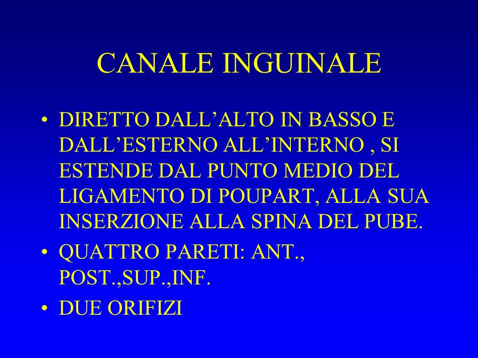 CANALE INGUINALE