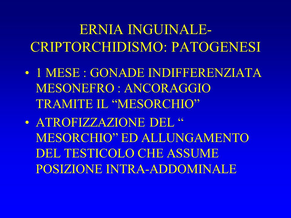 ERNIA INGUINALE- CRIPTORCHIDISMO: PATOGENESI