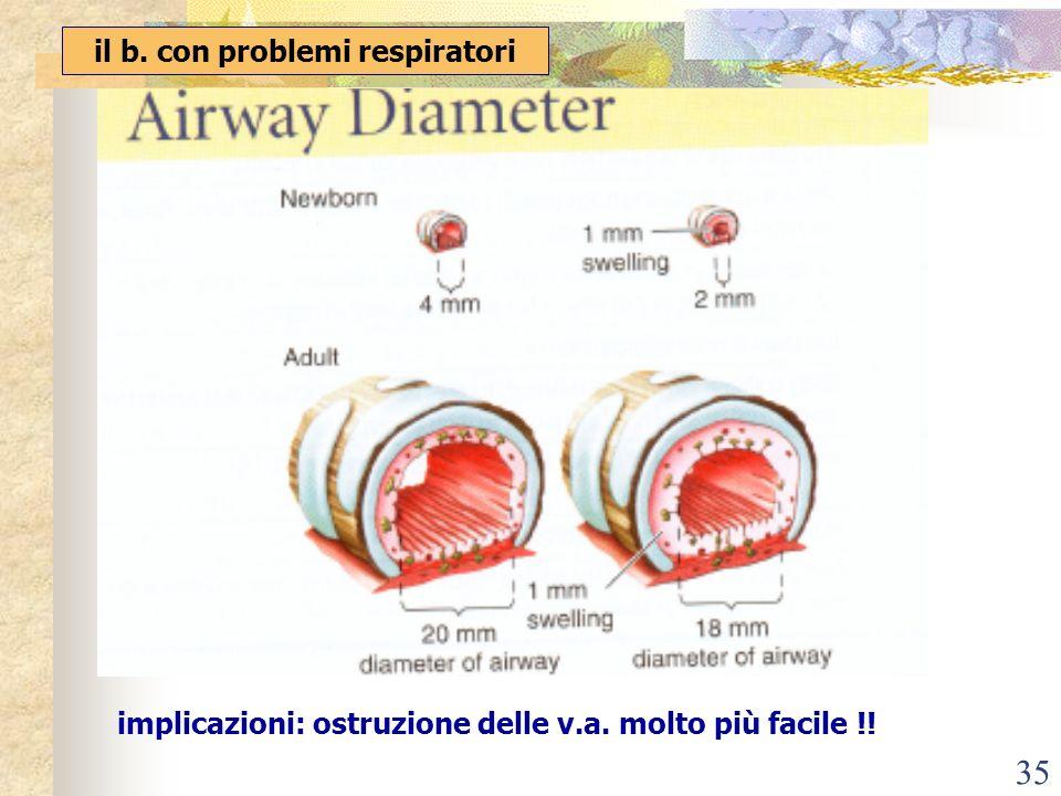 il b. con problemi respiratori