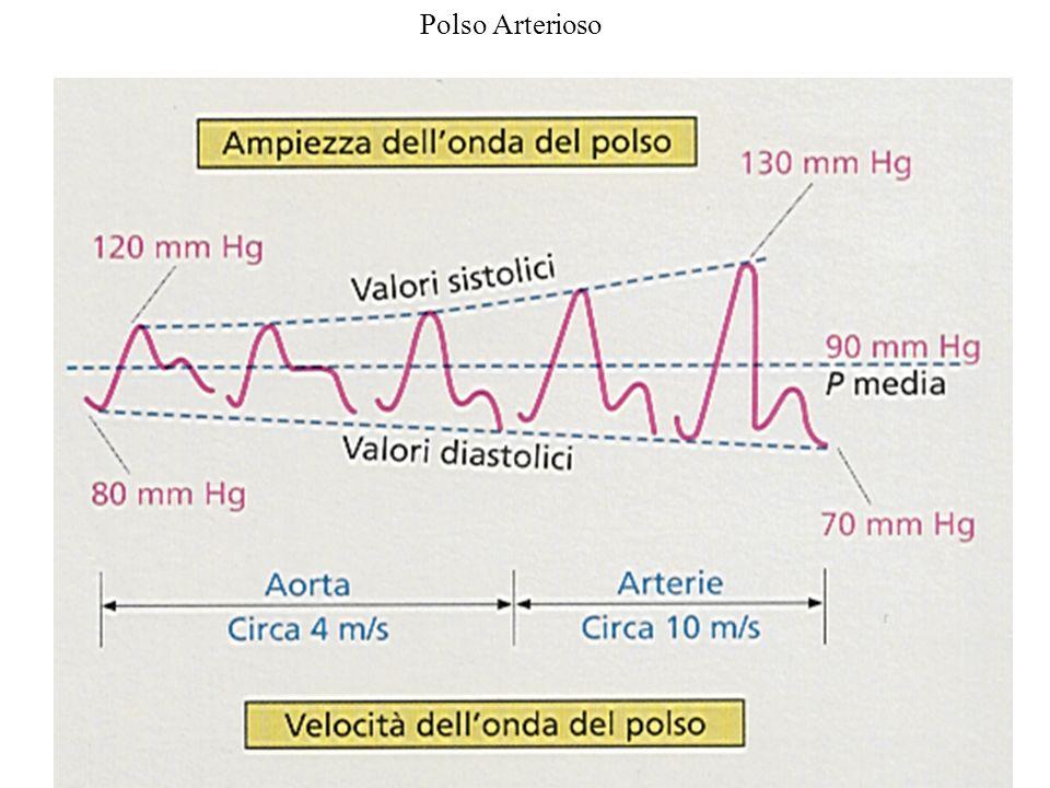 Polso Arterioso