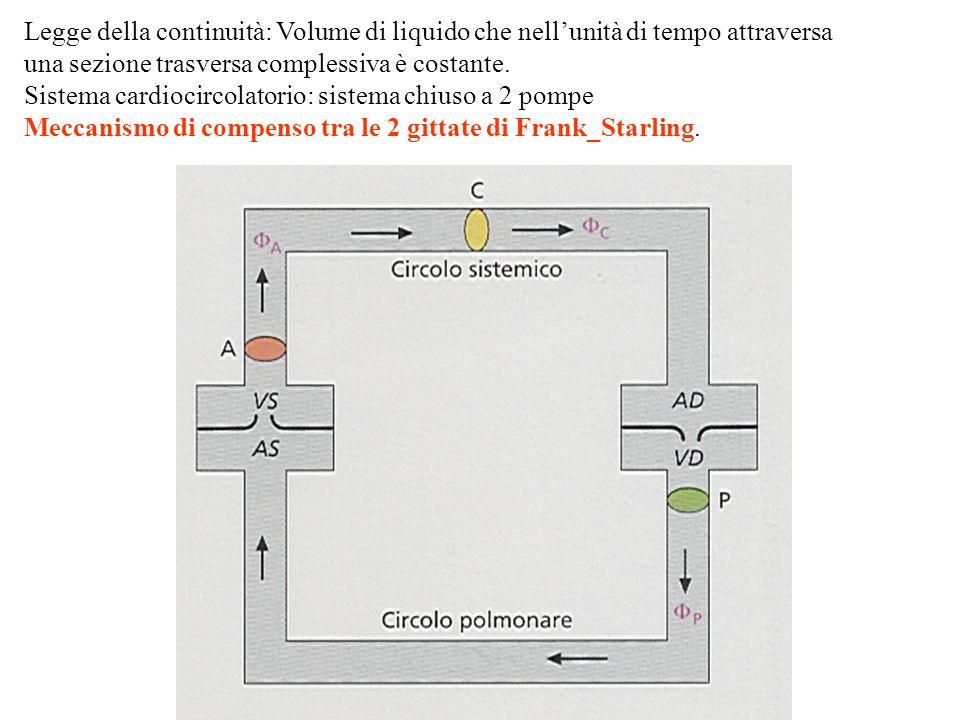Legge della continuità: Volume di liquido che nell'unità di tempo attraversa