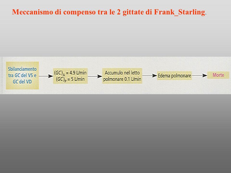 Meccanismo di compenso tra le 2 gittate di Frank_Starling.