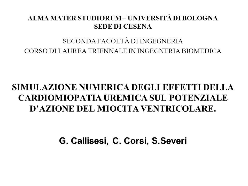 ALMA MATER STUDIORUM – UNIVERSITÀ DI BOLOGNA SEDE DI CESENA SECONDA FACOLTÀ DI INGEGNERIA CORSO DI LAUREA TRIENNALE IN INGEGNERIA BIOMEDICA SIMULAZIONE NUMERICA DEGLI EFFETTI DELLA CARDIOMIOPATIA UREMICA SUL POTENZIALE D'AZIONE DEL MIOCITA VENTRICOLARE.