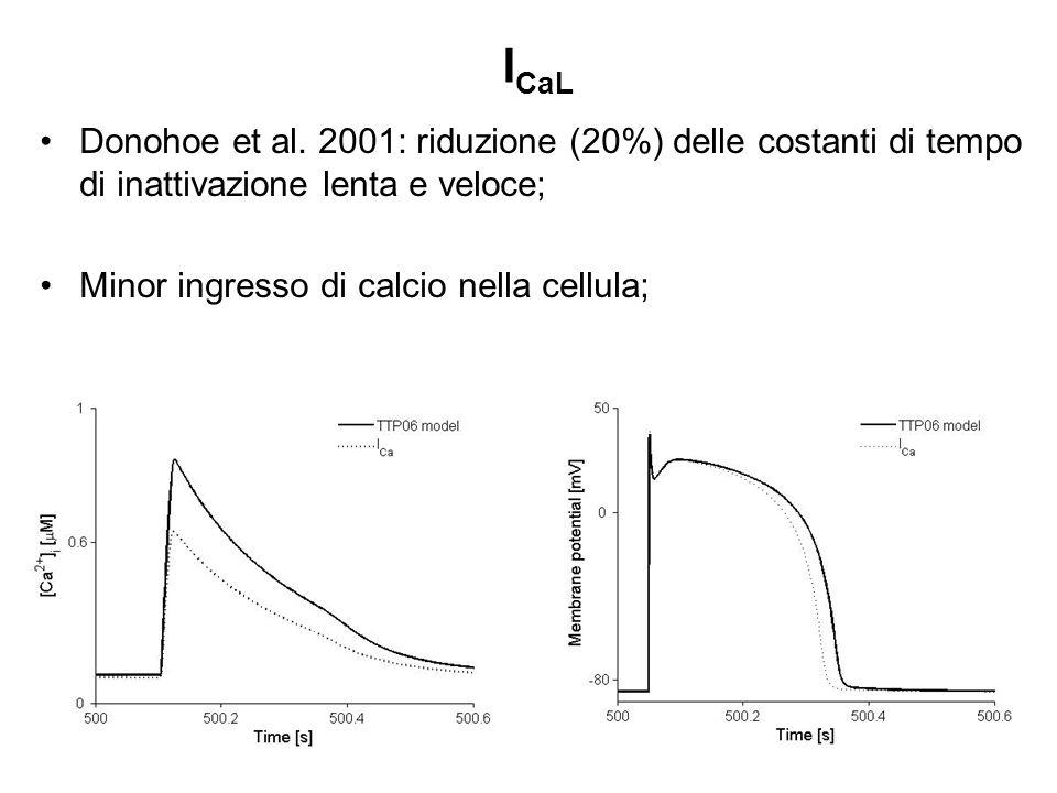 ICaL Donohoe et al.