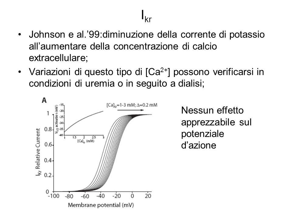 Ikr Johnson e al.'99:diminuzione della corrente di potassio all'aumentare della concentrazione di calcio extracellulare;