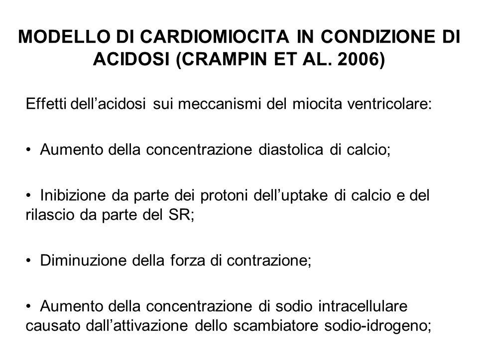 MODELLO DI CARDIOMIOCITA IN CONDIZIONE DI ACIDOSI (CRAMPIN ET AL. 2006)