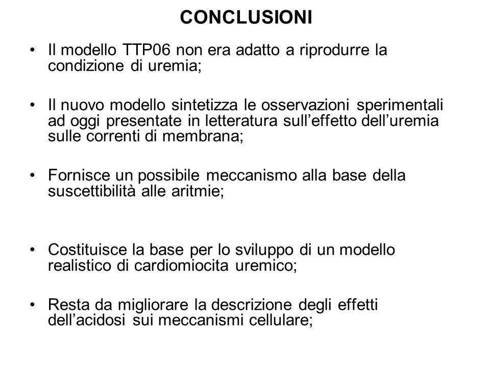 CONCLUSIONI Il modello TTP06 non era adatto a riprodurre la condizione di uremia;