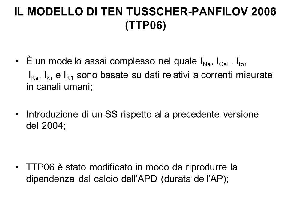 IL MODELLO DI TEN TUSSCHER-PANFILOV 2006 (TTP06)
