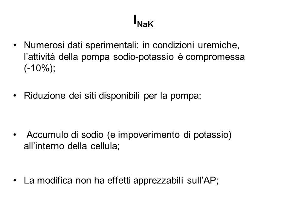 INaK Numerosi dati sperimentali: in condizioni uremiche, l'attività della pompa sodio-potassio è compromessa (-10%);