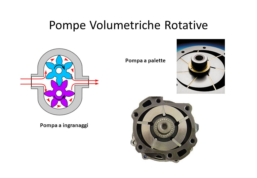 Pompe Volumetriche Rotative