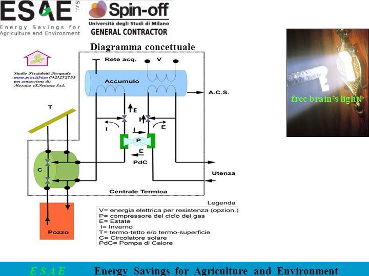 Diagramma concettuale