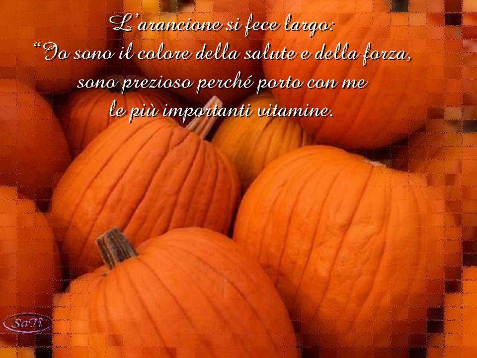 L'arancione si fece largo: Io sono il colore della salute e della forza, sono prezioso perché porto con me le più importanti vitamine.