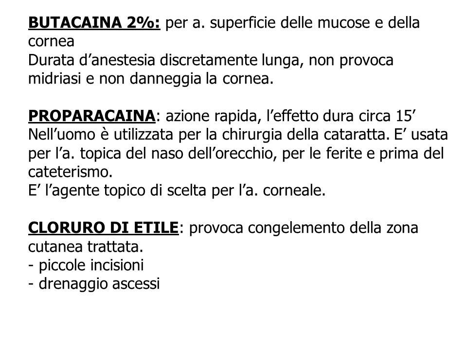 BUTACAINA 2%: per a. superficie delle mucose e della cornea