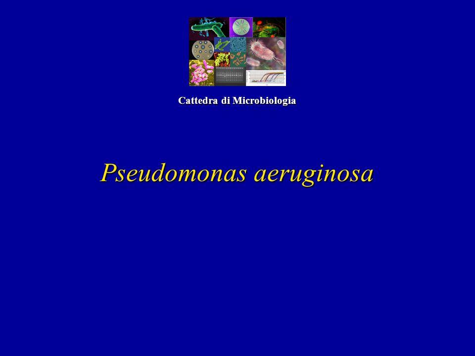 Cattedra di Microbiologia
