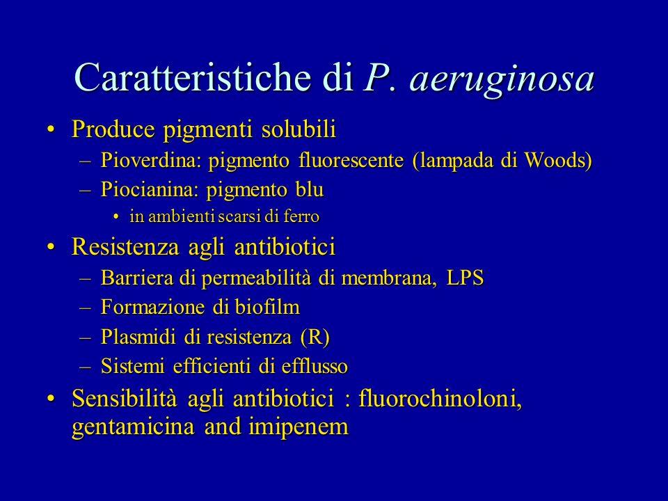 Caratteristiche di P. aeruginosa