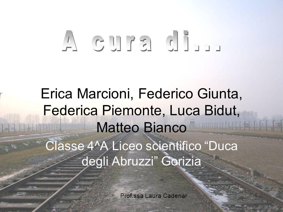 Classe 4^A Liceo scientifico Duca degli Abruzzi Gorizia