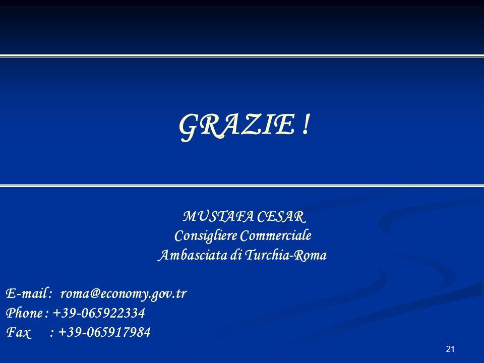 Consigliere Commerciale Ambasciata di Turchia-Roma