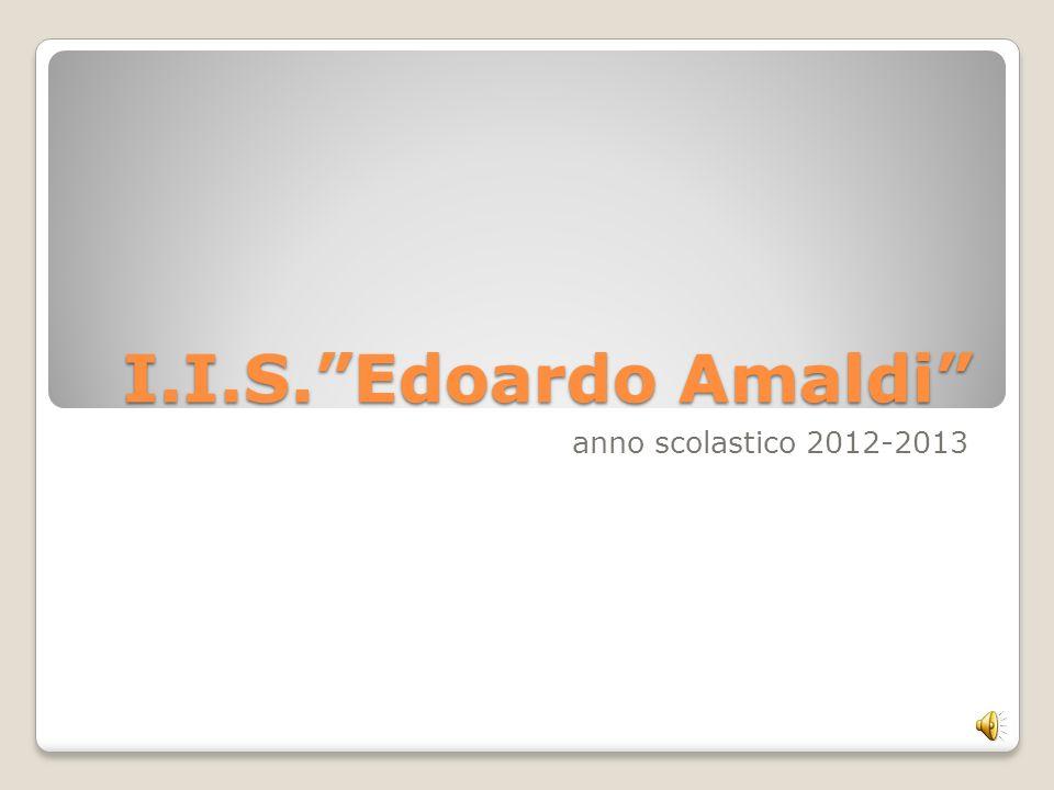 I.I.S. Edoardo Amaldi anno scolastico 2012-2013