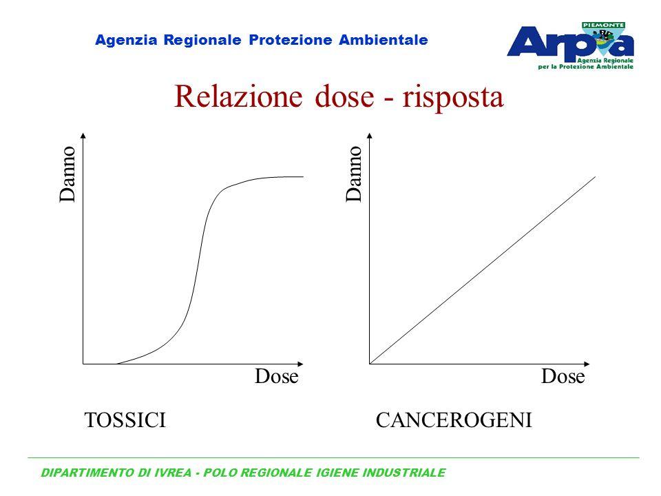 Relazione dose - risposta