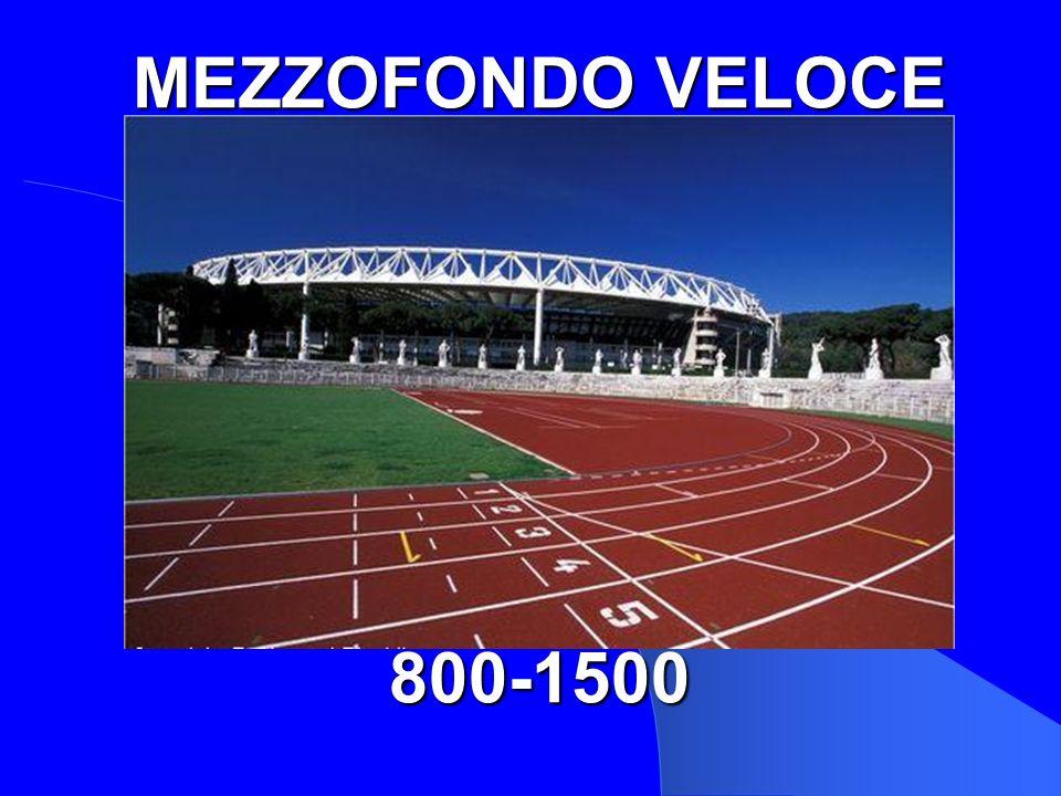 800/1500 MEZZOFONDO VELOCE 800-1500