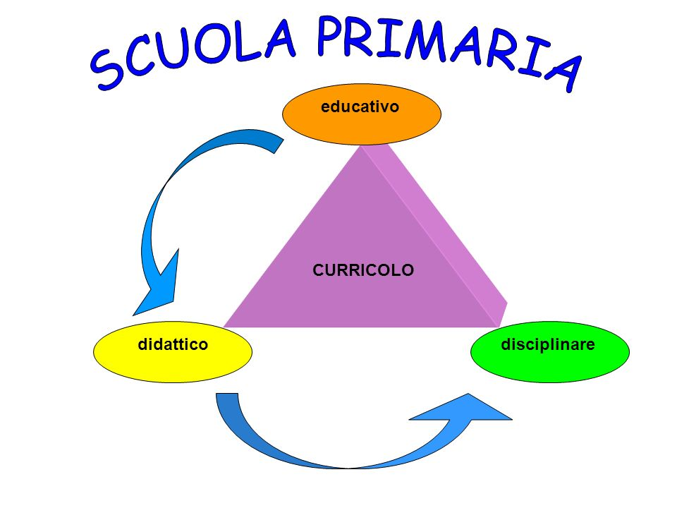 SCUOLA PRIMARIA CURRICOLO didattico educativo disciplinare
