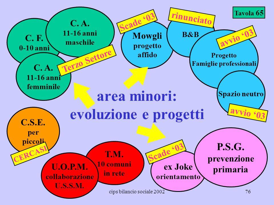 area minori: evoluzione e progetti