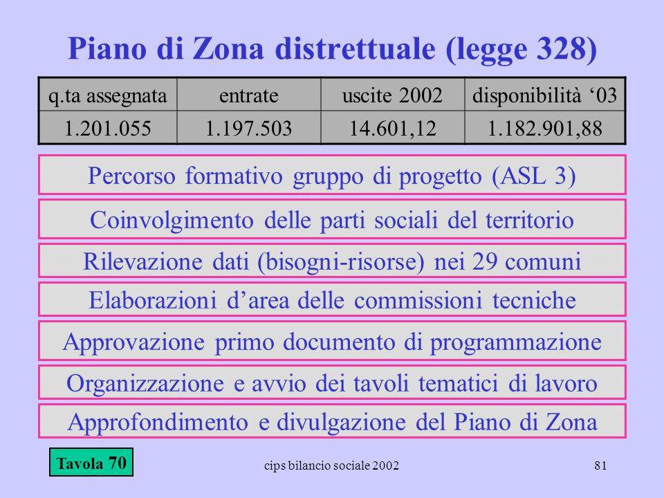 Piano di Zona distrettuale (legge 328)