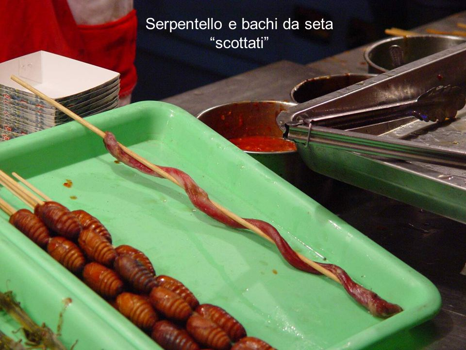 Serpentello e bachi da seta scottati