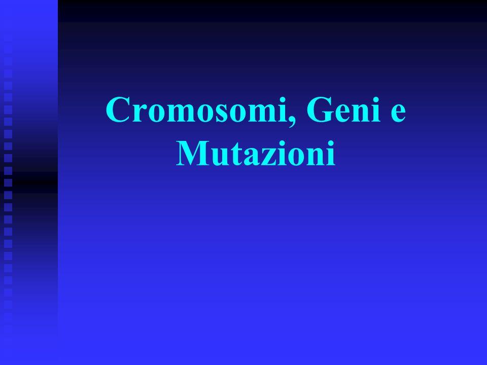 Cromosomi, Geni e Mutazioni