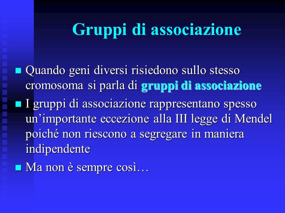 Gruppi di associazione