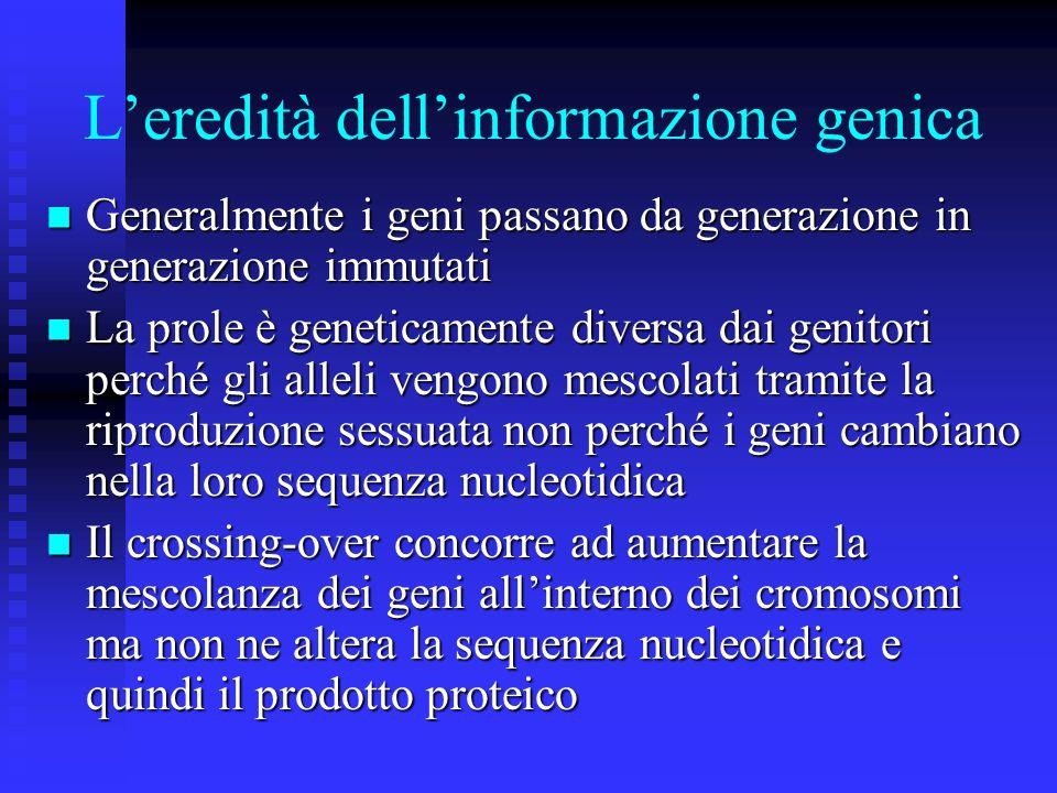 L'eredità dell'informazione genica