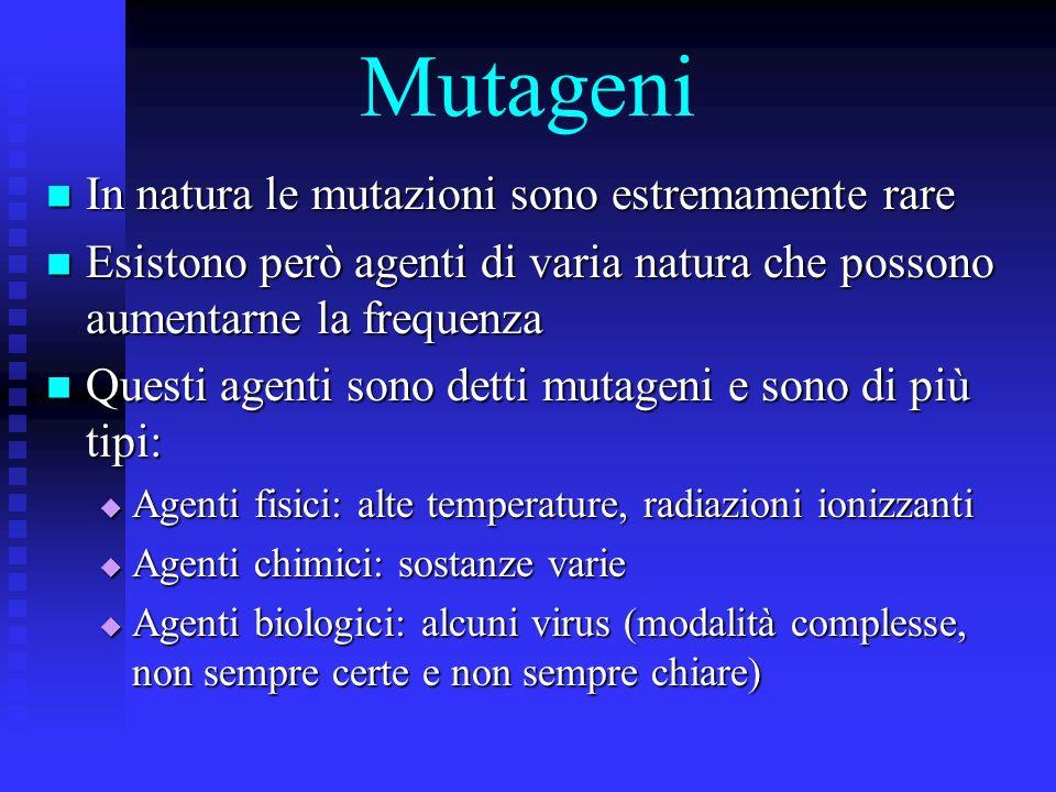 Mutageni In natura le mutazioni sono estremamente rare
